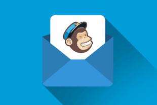 Leer in deze Online Cursus MailChimp alles over e-mailmarketing