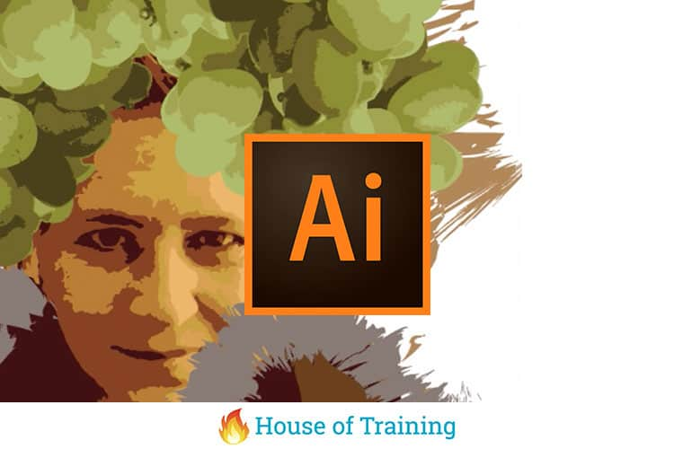 Maak kennis met Illustrator in deze beginnerscursus Adobe Illustrator