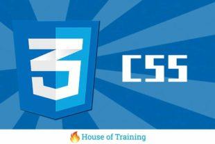 Leer meer over webdesign in deze online cursus website vormgeving met CSS