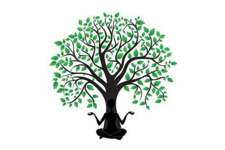 Leer ontspannen en bewust te worden van jouw gedachten en omgeving in deze online cursus mindfulness