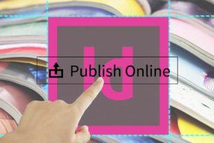 Leer alles over Publish Online in deze uitgebreide cursus