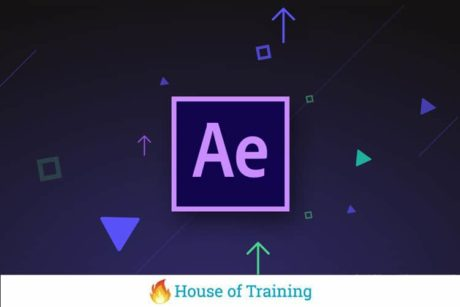 Leer Animated Infographics maken met After Effects in deze cursus